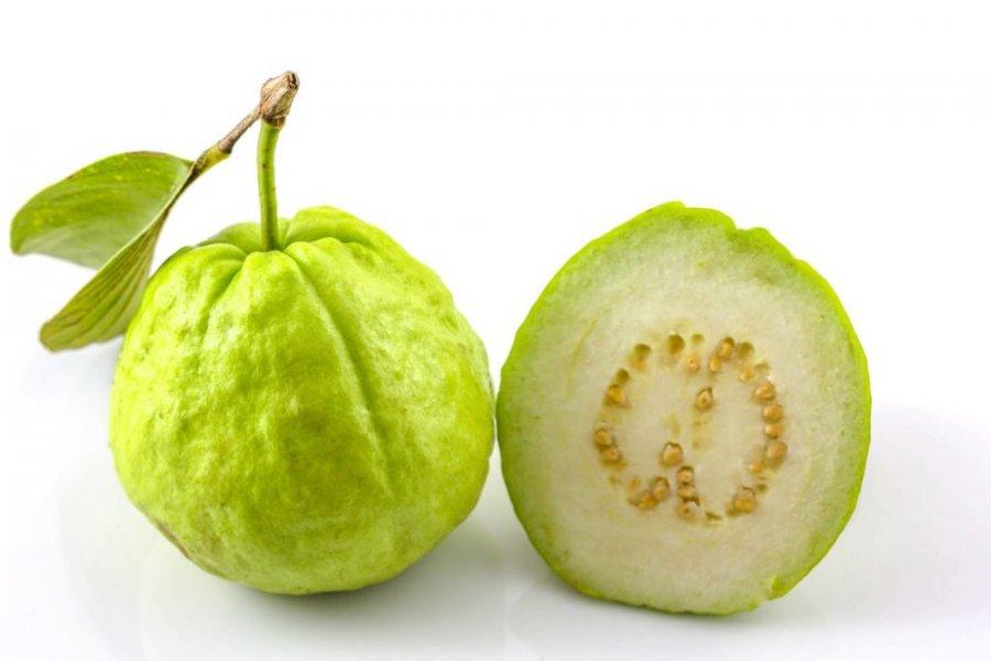 فوائد الجوافة شبكة الشفاء العالمية