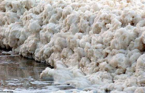 صورة لزبد البحر المذكور في القرآن sea_foam_02.jpg