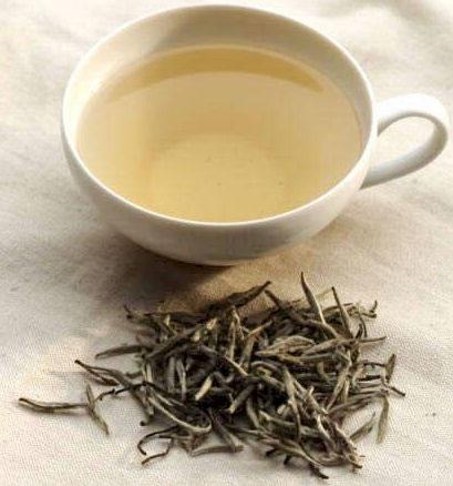 الشاي الأبيض من أهم الوسائل y4S76203.jpg